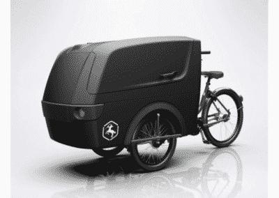 Triporteur BABBOE Trike XL
